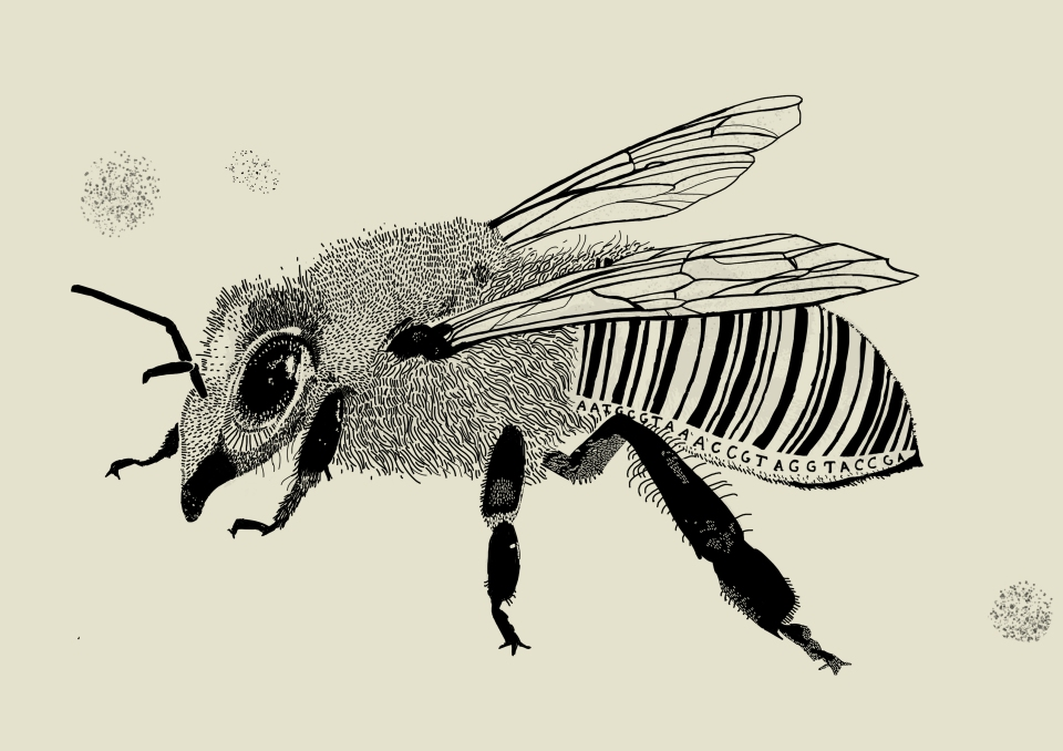to print barcode bee